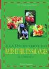 À la découverte des baies et fruits sauvages de Lorraine