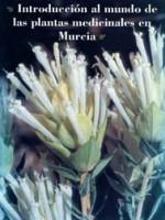 Introduccion al mundo de las plantas medicinales en Murcia
