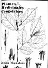 Plantes médicinales congolaises