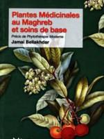 Plantes Médicinales au Maghreb et soins de base – Précis de phytothérapie moderne