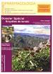 catalogue-news39